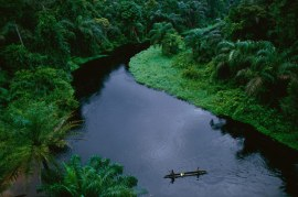 Congo paraiso