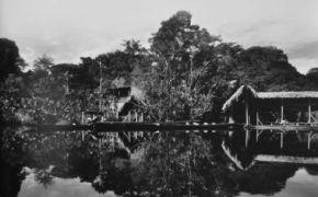 Imagen de la Reserva Natural Yasuni