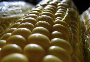 Sweet corn on the cob [foto de Wayne Truong, via Flickr]
