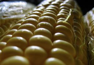 Sweet corn on the cob [foto de Wayne Truong, via Flickr]